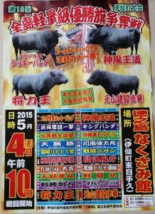 20150504軽量級闘牛大会