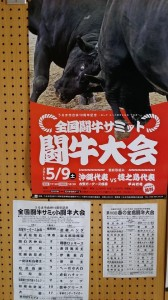 20150509沖縄闘牛大会