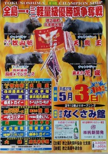 20150503全島一闘牛大会