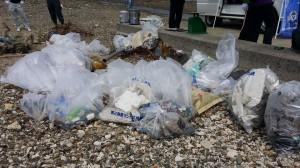 20150628海岸清掃7
