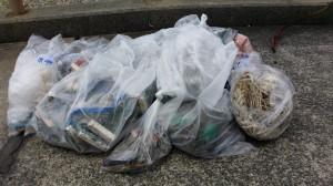 20150628海岸清掃17
