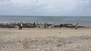 20150628海岸清掃4