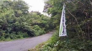 20150809森の探検隊6
