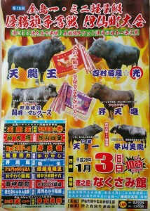 201601闘牛ポスター3