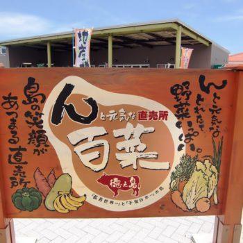 hyakusai001.jpg