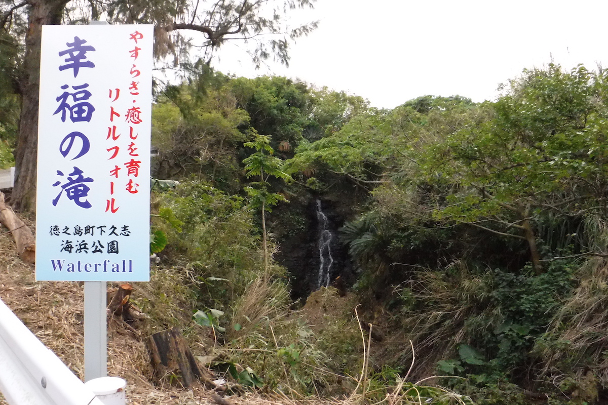 shimokushi_5